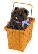 Toto in the Basket Accessory