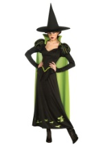 Wicked Witch of the West Adult Costume
