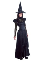 Emerald City Plus Size Witch Costume