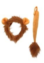 Lion Accessory Kit