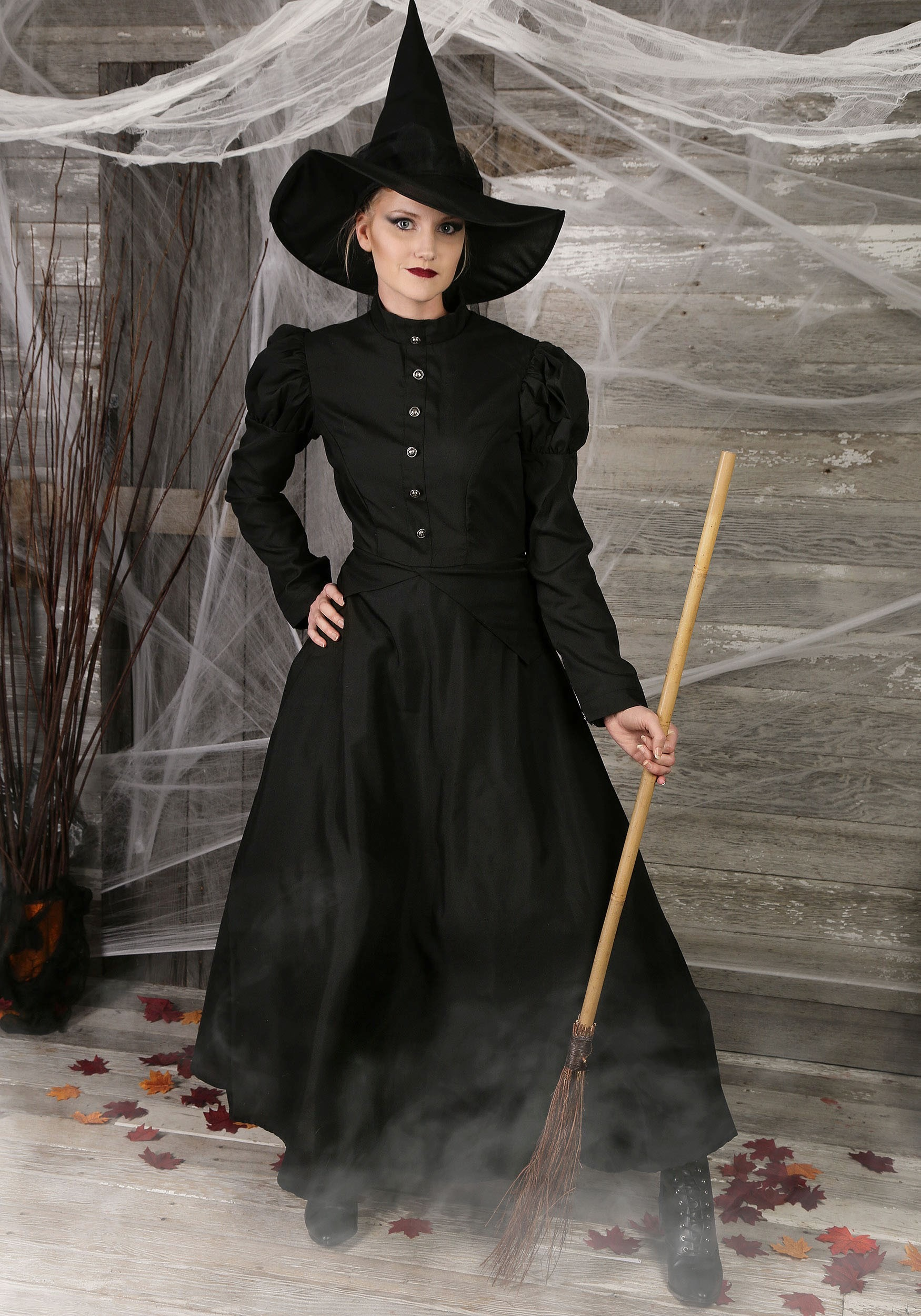 7ab862774cf Plus Size Classic Witch Costume
