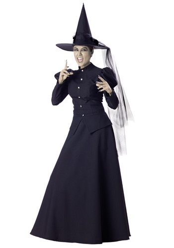 Womens Classic Witch Costume